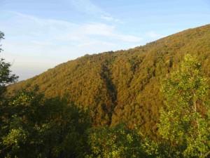 фот: Митко Спироски, Рана есен на Шар Планина