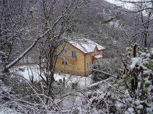 photo: Mitko Spiroski, Lesok, 29.11.2016, Padna prviot sneg na Kale