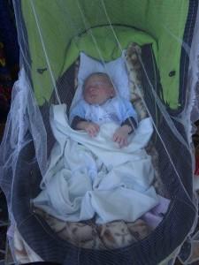 фото: Митко Спироски, Лешок, 27 Август 2017, Внучето Давид во количка нанка и покриен е со мрежа од комарци